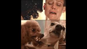 Kto jest lepszym aktorem