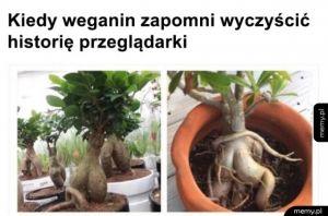 Wegański fap