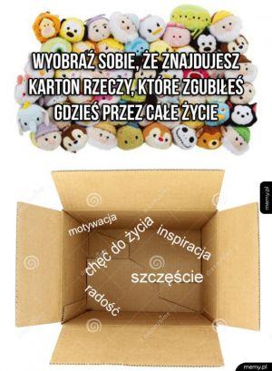 Karton dobroci