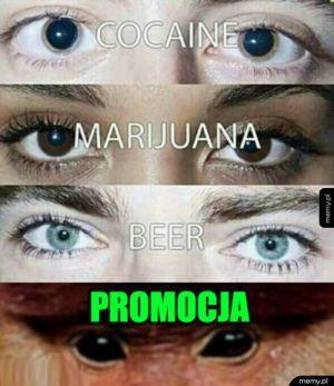 Janusz promocji 1