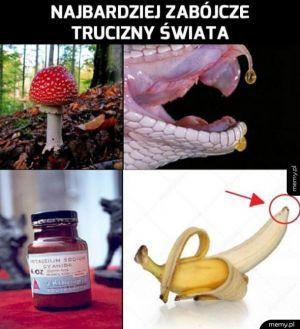 Uważaj na te zabójcze substancje