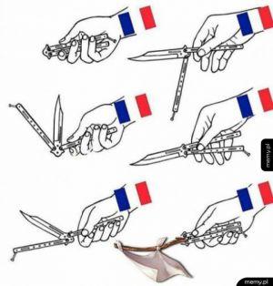 Obrona Francji
