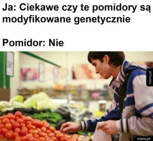 Pomidor wyjaśnił