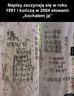 Historia pewnej miłości