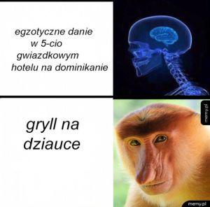 Gryll