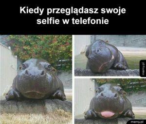 Selfie czar