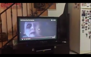 Pies ogląda horror