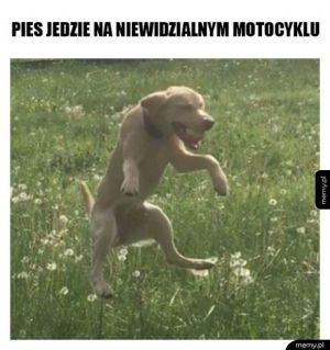 Niewidzialny motocykl