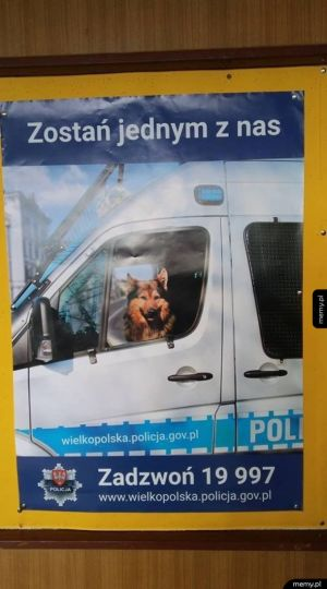 Plakat rekrutacyjny wielkopolskiej policji