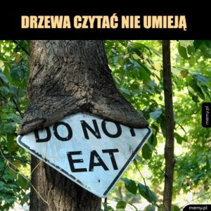 Znak i drzewo