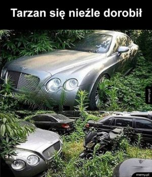 Bogaty Tarzan
