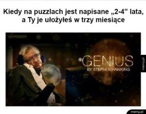 Jestem geniuszem