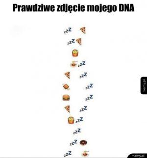 Moje DNA
