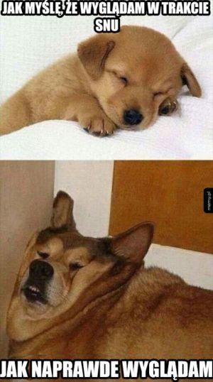 Jak wyglądam w trakcie snu