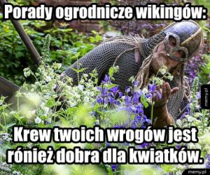 Sekrety wikingów