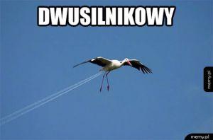 Dwusilnikowy Bocian