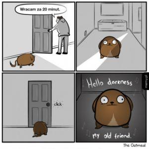 Co się dzieje, kiedy zostawiasz swojego zwierzaka samego w domu