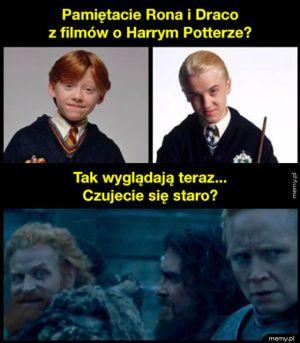 Ron i Draco