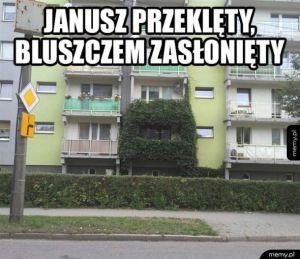 Przeklęty Janusz