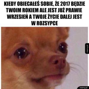 Rok w rok to samo