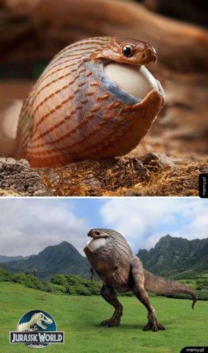 Dziwny dinozaur