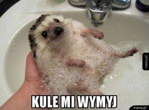 Szybko myj!