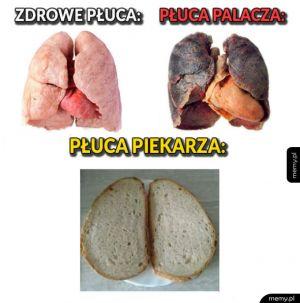 Płuca piekarza