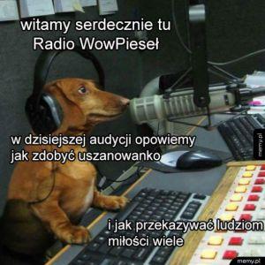 Radio Pieseł halo