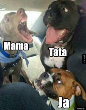 Kłótnie rodziców