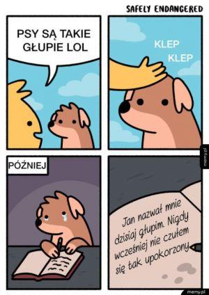 Pomyśl zanim nazwiesz psa głupim