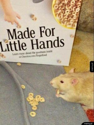 Dla małych rączek
