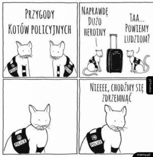 Bo koteły nie kable...