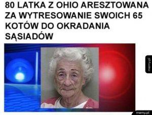 Kocia matka lvl 100