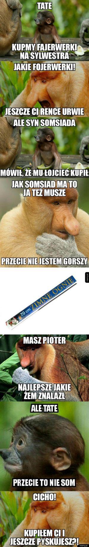 Janusz i fajerwerki