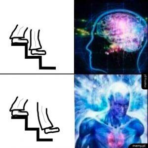 Intelekt