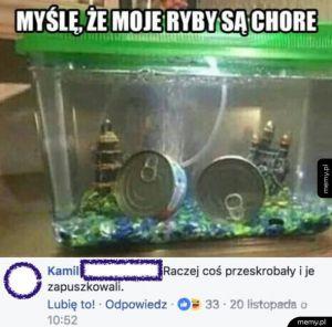 Myślę, że moje ryby są chore