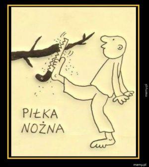 """""""Trudna język polska..."""""""