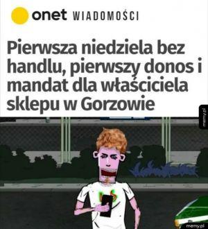 Donosik