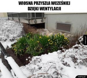 Wczesna wiosna