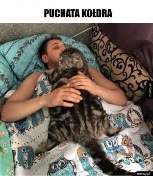 Spanie z panem