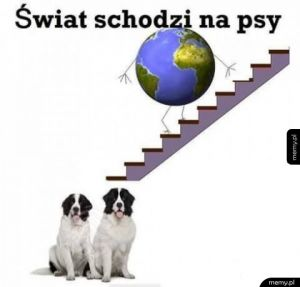Co za świat