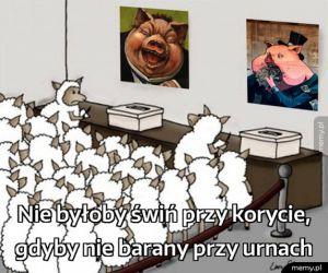 Nie było by świń przy korycie...
