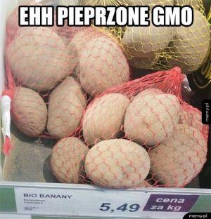 Genetycznie modyfikowana żywność
