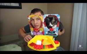 Kot przegrał