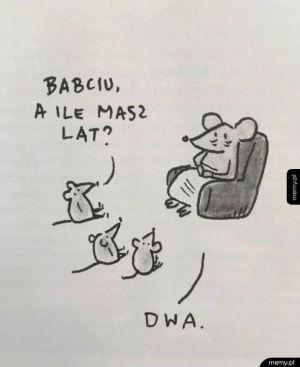 Babcia myszka