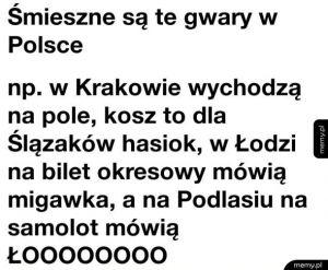 Polskie gwary