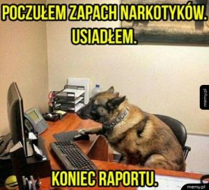 Koniec raportu