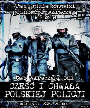 Polscy paladyni