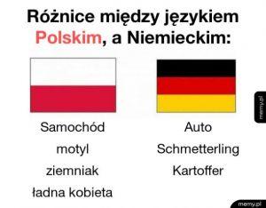 Różnice między polskim a niemieckim