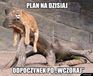 Plan dzisiaj